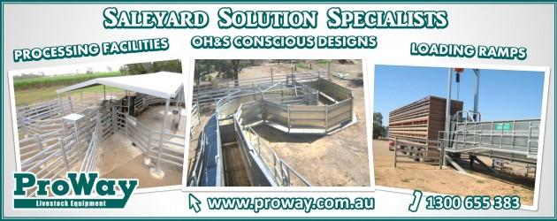 Proway landscape ad ii